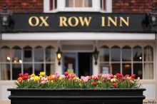 - Kwiaty - Ox Row Inn